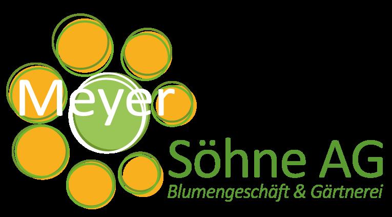 Meyer Söhne AG