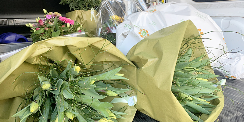 Meyer Söhne AG, Blumengeschäft & Gärtnerei